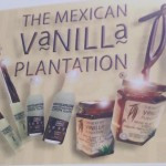 MexicanVanillaPlantation