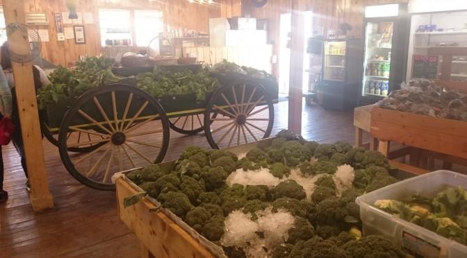 Lester's Farm Market – St John's