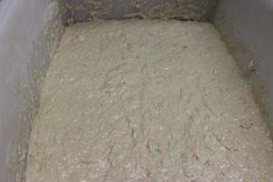Focaccia Dough